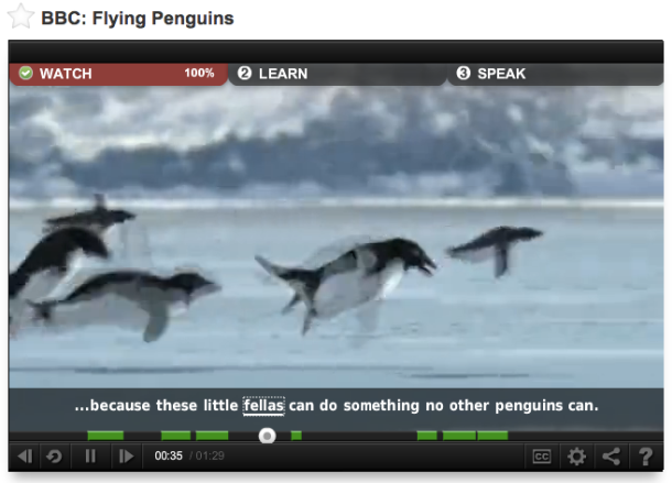 BBCFlyingPenguins